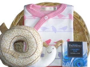 Butterfly Budget Baby Gift Basket